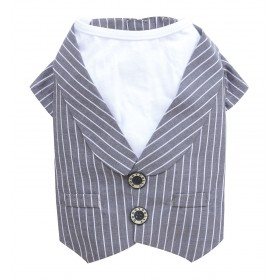 Gilet rayé avec T-Shirt blanc
