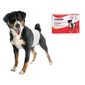 Couches jetables pour chien mâle