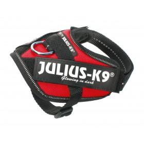Harnais Julius K9 Power Baby 1 rouge