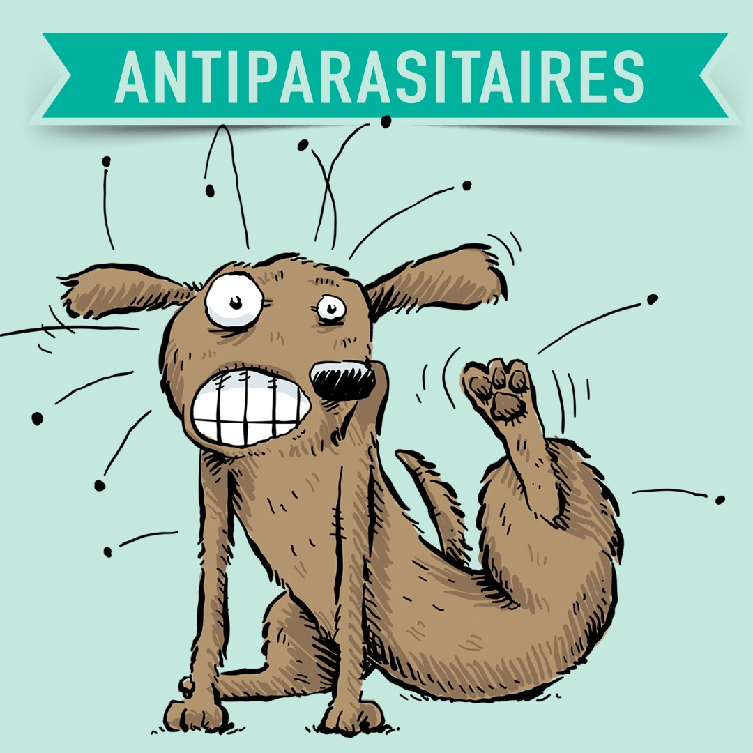 antiparasitaires